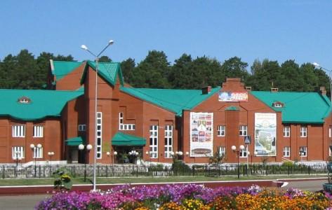 Детская школа искусств села Николо-Березовка