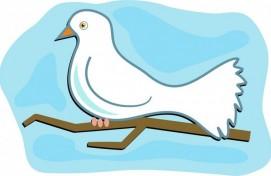 Международный конкурс «Голубь Весны» пройдёт в Уфе