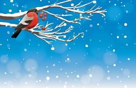 Примите участие в новогодних всероссийских творческих конкурсах