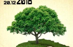 Акция «Сохраним деревья вместе!» в Республиканском музее Боевой Славы продолжается