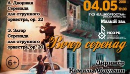 """The program """"Evening of Serenades"""" will be presented by the National Symphony Orchestra of the Republic of Bashkortostan"""