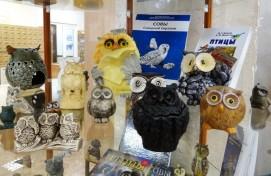 В Уфе открылась выставка «Мудрая птица: «совомания» Полины Полежанкиной»