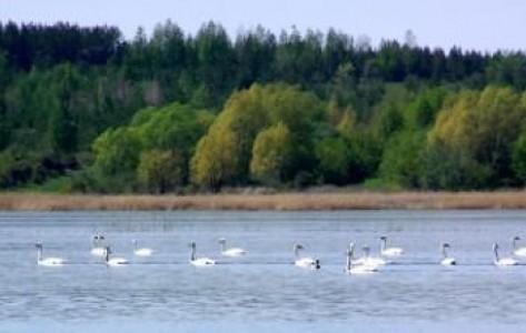 """Природный парк """"Кандрыкуль"""""""