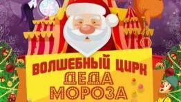 """В ГКЗ """"Башкортостан"""" пройдут новогодние представления «Волшебный цирк деда Мороза»"""