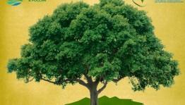 Республиканский музей Боевой Славы объявляет акцию по сбору макулатуры «Сохраним деревья вместе!»