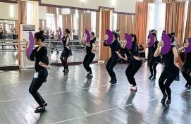 Артисты ансамбля им. Ф. Гаскарова привезут с гастролей новый вьетнамский танец